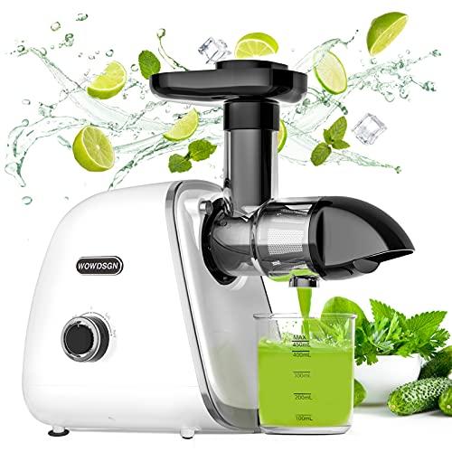 Slow Juicer,WOWDSGN Entsafter Gemüse und Obst,BPA-frei Profi Entsafter mit Ruhiger Motor und Umkehrfunktion
