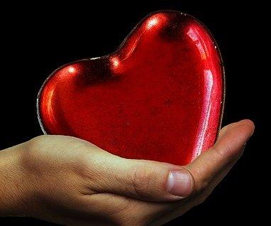 Blut Herz Bludruck